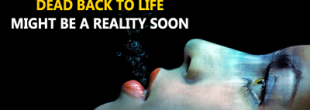 تکنولوژی بازگرداندن مرده ها به زندگی در حال بررسی است